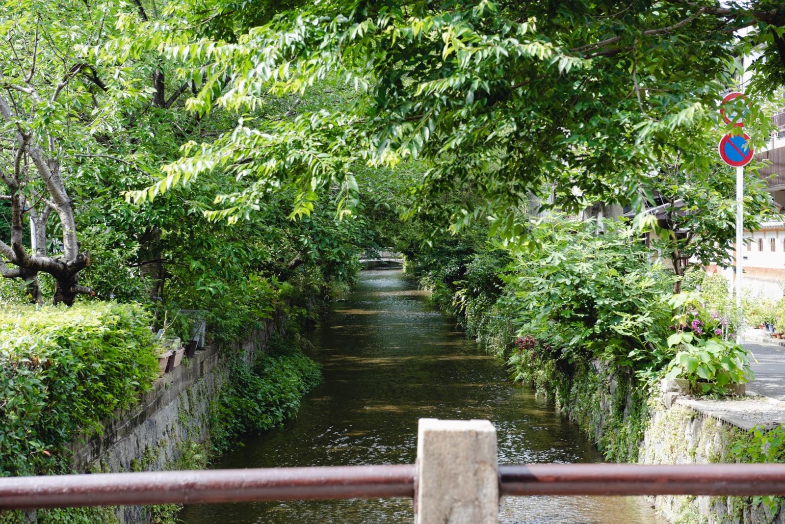 高瀬川の風景